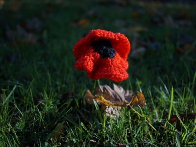 Buckley Remembrance Parade - 108