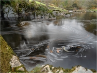 Fairy Glen Pool-_Peter Williams Prints_(016.0)