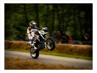 Wheelie enjoying himself -print_Richard Hipwell Prints_(017.0)