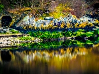 Colourful-Reflection_Mark-Newman-PDI_013.0