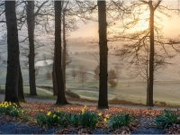Mist-at-Sunrise_Peter-Williams_020.0