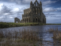 Whitby Abbey_Stuart McPhee_(016.0)_